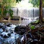 Reserva Biológica de Duas Bocas. Fonte: es.gov.br / Cacá Lima